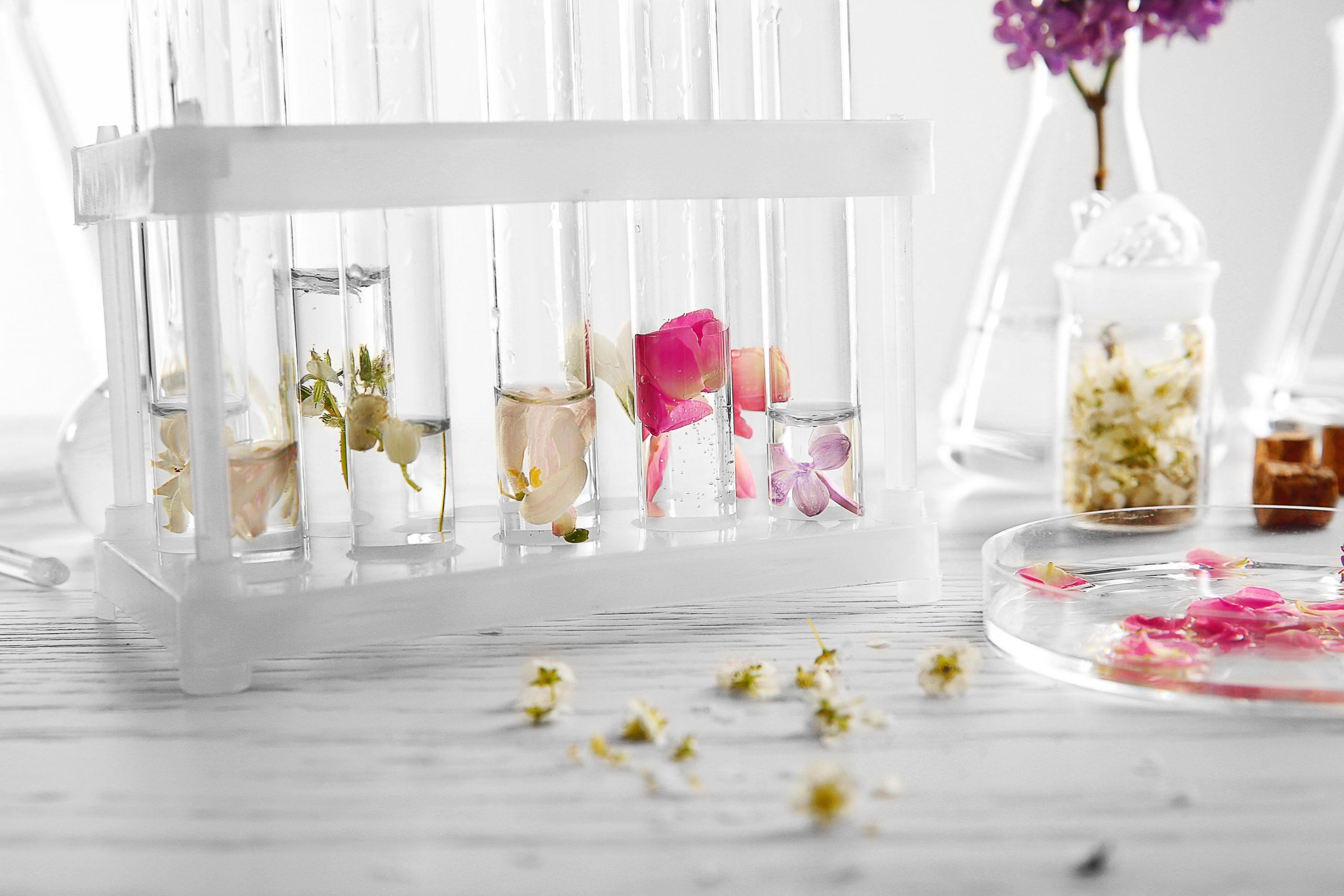 Pipettes pétales de fleurs parfums