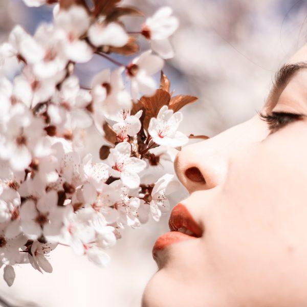 Chloris - Nymphe des fleurs